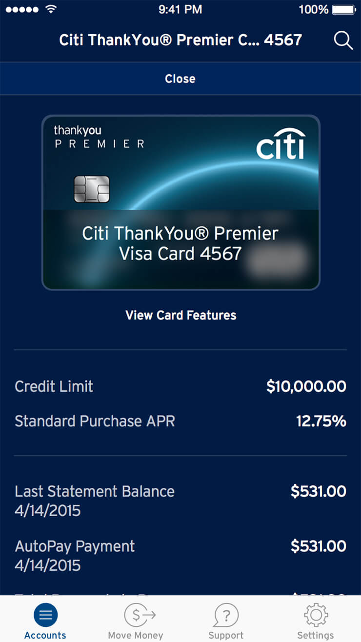 citimobile_ledgers_middle